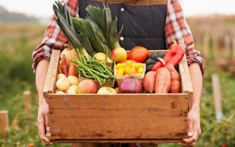 Τι φρούτα (και λαχανικά) βγάζει ο Σεπτέμβρης;