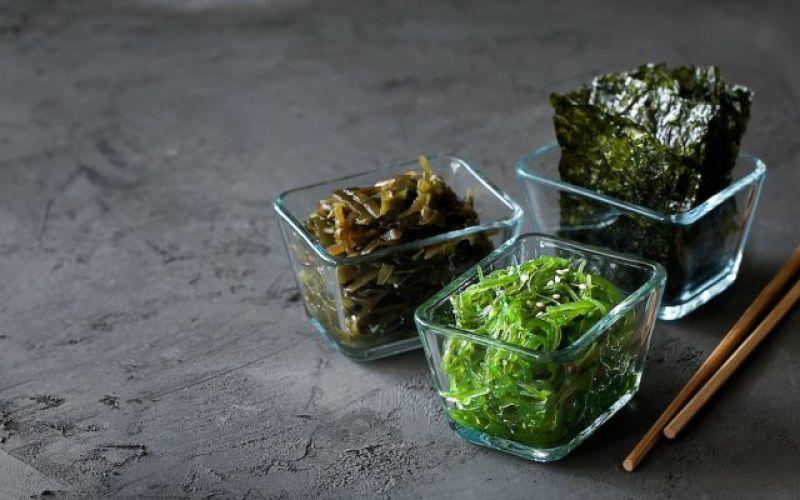 Φύκια: Το μυστικό των θαλασσών στο πιάτο σας!