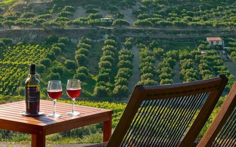 Three routes leading to wine