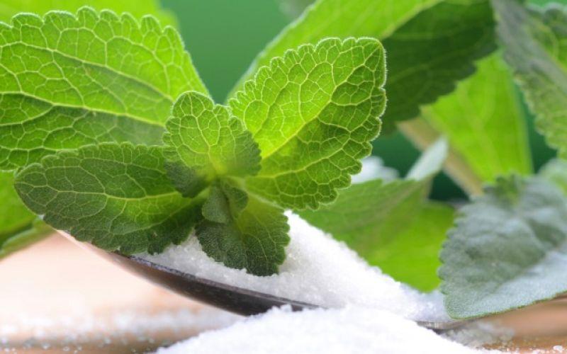 Στέβια, γιατί τη χρησιμοποιούμε αντί της ζάχαρης