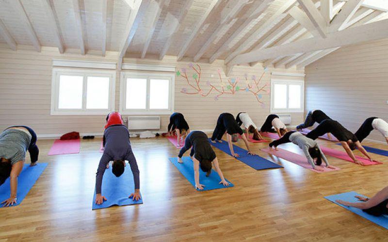 Yoga και Οικολογία