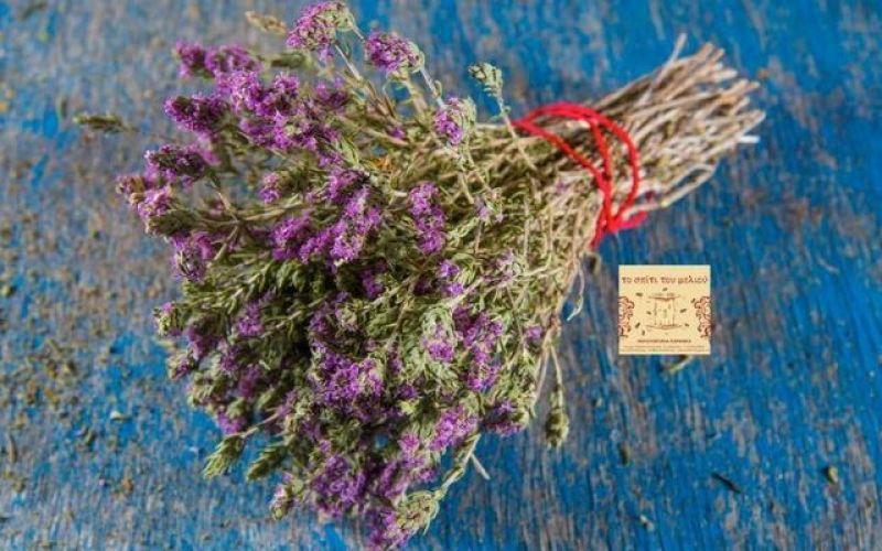 Θυμάρι: φάρμακο και βότανο